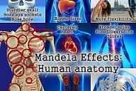 Mandela Effect: Human Ana